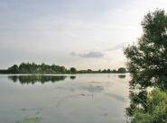 Коттеджный поселок Морозовские дачи
